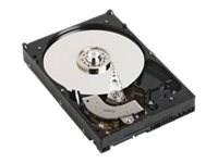 Dell hdd 2TB 7.2K RPM SATA 6Gbps 3.5in Hot-plug Hdd 13G Seve
